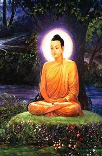 Немного о буддизме, воображении и выслеживании