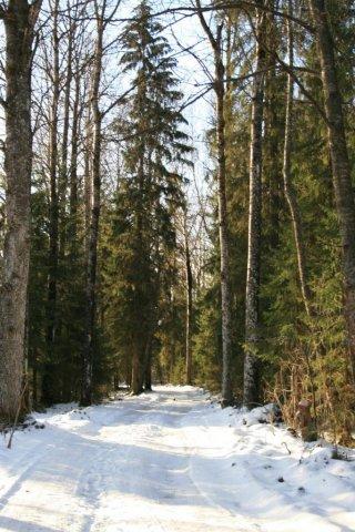 От этой дороги шли наши тропки.