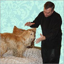 Геннадий Винокуров оказывает психологическую и экстрасенсорную помощь домашним питомцам. Изображение взято с сайта Геннадия Винокурова