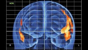 Как мозг узнает слова?