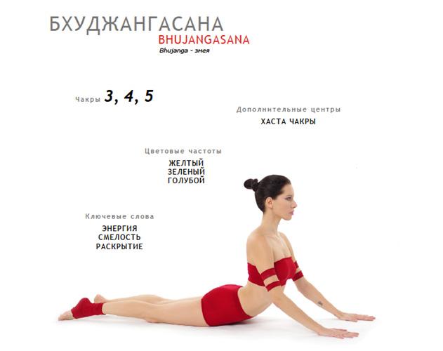 Практика Йоги. Бхуджангасана