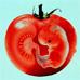 ГМО и Родовая память