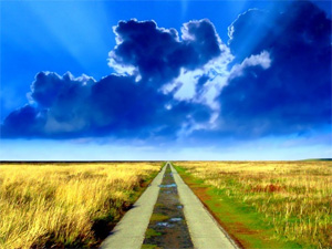 Я выбираю путь — путь выбирает меня