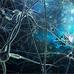 Зеркальные нейроны: вымысел и реальность