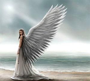 Как узнать земного ангела