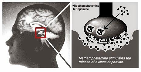 Величайший дофаминовый обман мозга